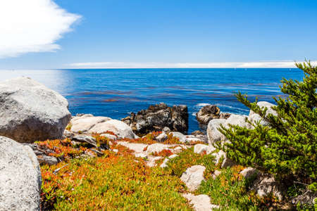The 17 Mile Drive is a scenic road through Pacific Grove and Pebble Beach in Big Sur, Monterey, California, USA. Фото со стока