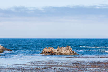 lions rock: The 17 Mile Drive is a scenic road through Pacific Grove and Pebble Beach in Big Sur, Monterey, California, USA. Stock Photo