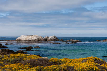 pebble beach: The 17 Mile Drive is a scenic road through Pacific Grove and Pebble Beach in Big Sur, Monterey, California, USA. Stock Photo