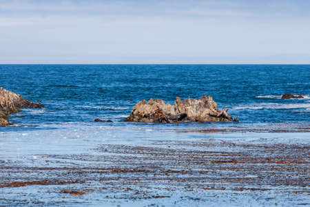 mile: The 17 Mile Drive is a scenic road through Pacific Grove and Pebble Beach in Big Sur, Monterey, California, USA. Stock Photo