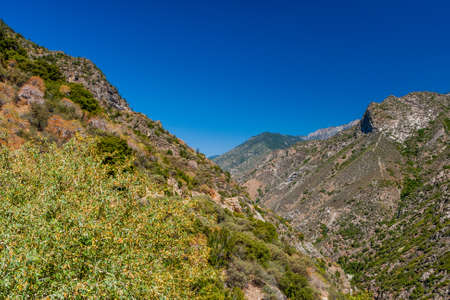 kings canyon national park: Beatiful scenic view at Highway 180, Kings Canyon National Park, Southern Sierra Nevada, California, USA. Stock Photo