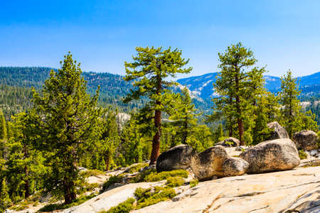 Tioga Pass is a mountain pass in the Sierra Nevada mountains. State Route 120 runs through it, and serves as the eastern entry point for Yosemite National Park, at the Tioga Pass Entrance Station. Imagens