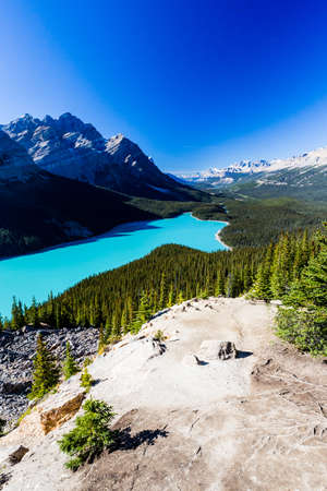 accessed: Peyto Lake is a glacier-fed lake located in Banff National Park in the Canadian Rockies. The lake itself is easily accessed from the Icefields Parkway.
