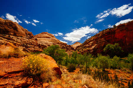 national parks: The trail to Hickman Bridge is Capitol Reef National Parks most popular hike and features fantastic views of the Waterpocket Fold and the majestic natural bridge. Stock Photo