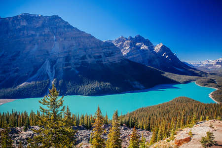 Peyto Lake is a glacier-fed lake located in Banff National Park in the Canadian Rockies. The lake itself is easily accessed from the Icefields Parkway.