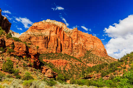 Zion National Park has many beautiful attractions, thousands of visitors come from all over the world every year. Stock Photo