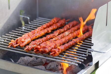 grill: Barbecue Grill With Meat