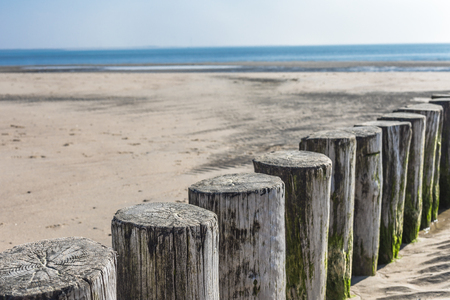 Wooden Spur Dyke At The Lonesome Beach