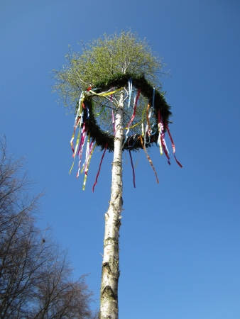 A may tree or maypole Stock Photo - 24068491