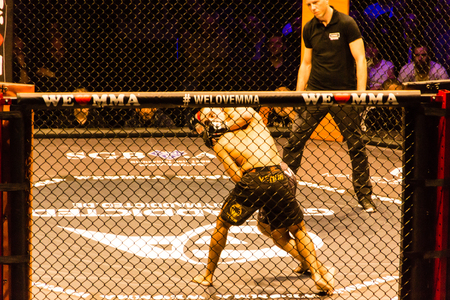Hamburg, Germany - Nov 18th, 2017: The fight between Idris Aloulou and Jonathan Grenon during We Love MMA 34
