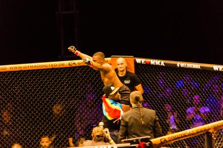 Hamburg, Germany - Nov 18th, 2017: The fight between Said-Magomed Yanderbaev and Ruddy Kisangou during We Love MMA 34