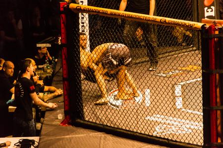 Hamburg, Germany - Nov 18th, 2017: The fight between Idris Aloulou and Jonathan Grenon during We Love MMA 34