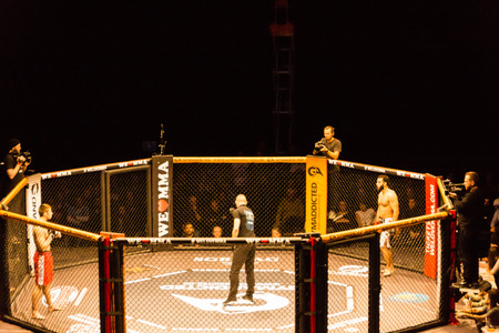 Hamburg, Germany - Nov 18th, 2017: The fight between Ali Ramadan and Aaron Fr�hlich during We Love MMA 34