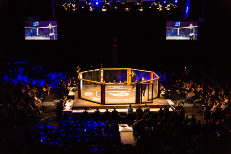 Hamburg, Germany - Nov 18th, 2017: The Octagon during We Love MMA 34