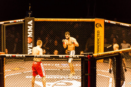 Hamburg, Germany - Nov 18th, 2017: The fight between Ali Ramadan and Aaron Fröhlich during We Love MMA 34