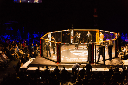 Hamburg, Germany - Nov 18th, 2017: The eighth fight during We Love MMA 34  Editorial