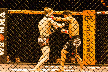 Hamburg, Germany - Nov 18th, 2017: The fight between Alexander Luster and Mustafa Ahmedi during We Love MMA 34