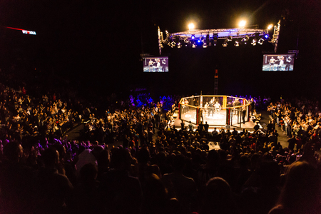 Hamburg, Germany - Nov 18th, 2017: The seventh fight during We Love MMA 34