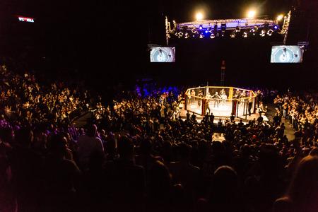 Hamburg, Germany - Nov 18th, 2017: The seventh fight during We Love MMA 34  에디토리얼