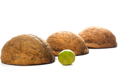 Shell and pea confidence trick with walnut shells