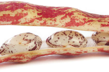 borlotti beans: Close up of Colourful borlotti beans in their speckled pod Stock Photo