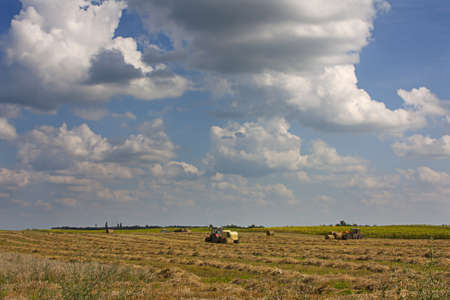 bailer: Farming on a large horizon featuring a hay bailer and hay lifter under a big cloudy sky Stock Photo
