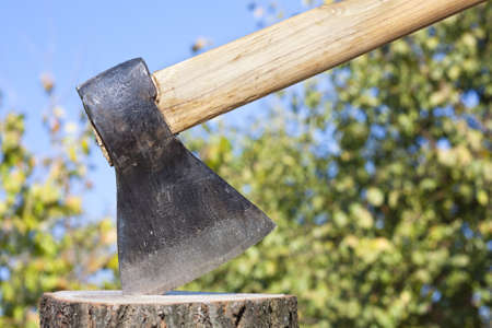 winter wood: Axe or wood chopper with winter wood against a natural foliage background