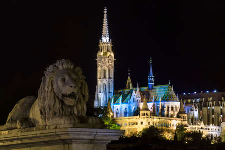 William Tierney Clarks Lion guarding the Mátyás-templom on the banks of the River Danube in Budapest Stock Photo - 22366577