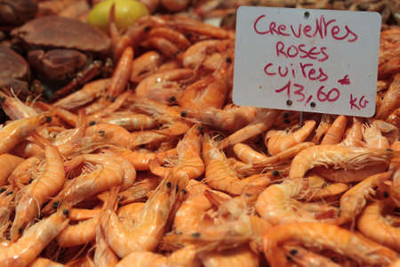 st  malo: Fresh prawns at a sea food market in St Malo France