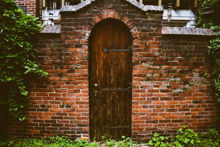 A Dark Wooden Door, in a Brick Wall, leading into a small backyard.