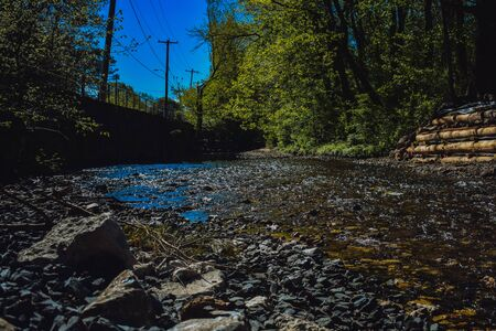 A shot of a blue creek surrounded by trees and plants.