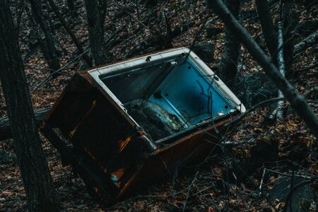 A Shot of an Abandoned Refridgerator in the Woods