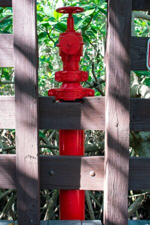 A Shot of a Bright Red Fire Hydrant Amidst Nature Stockfoto