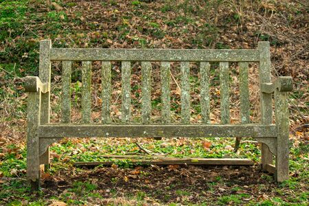 A Mossy Wooden Park Bench With a Hill Behind It
