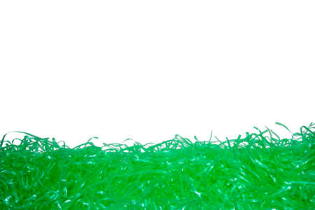 Green Easter Grass With a Pure White Background Behind it as Copy Space