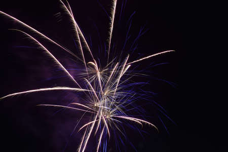 An Explosion of Bright Fireworks on a Pure Black Sky on the Fourth of July Banco de Imagens