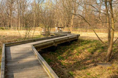 A Wooden Boardwalk in a Park in Suburban Pennsylvania
