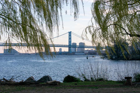 Looking Through Bright Green Trees at the Ben Franklin Bridge From the Newly Renovated Penn Treaty Park