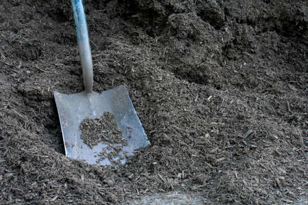 A Metal Gardening Shovel in a Large Pile of Black Mulch