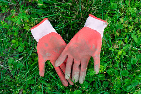 Used Red Garden Gloves Laying in a Patch of Green Grass That Fills the Frame