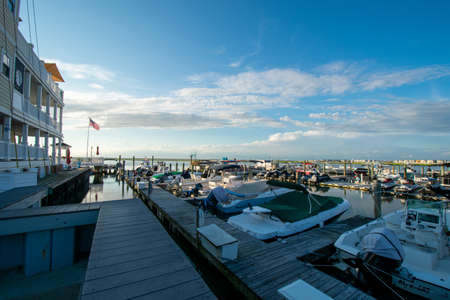A Marina Full of Boats With a Clear Blue Sky Behind in Wildwood New Jersey
