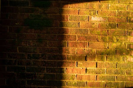 A Textured Brick Wall With Moss Growing on it and Half Lit by Orange Light Coming Through a Window
