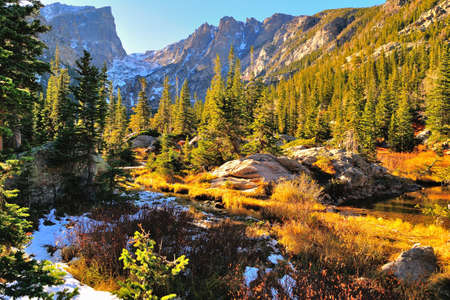 colorado: Colorful forest in Rocky Mountain National Park in fall with snow and mountains in background, Colorado, USA