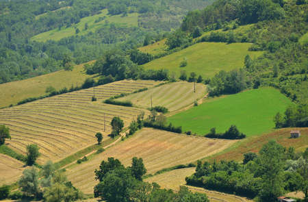 Aerial view of small fields, meadows with hay and forest in late spring, Southern France photo