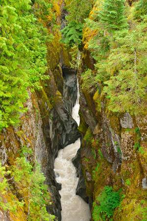Box canyon and white whiter in Mount Rainier NP, Washington State, USA Stock Photo - 23149854