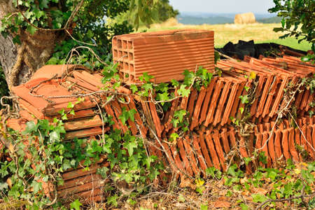 Roof tiles stacked in a garden, with ivy and weeds Stock Photo - 23149893