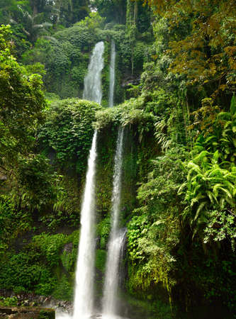Tall tropical waterfall in the jungle, Indonesia photo