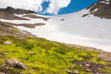 cascade range: Wetland and snow on a mountain in summer, Mount Rainier, USA Stock Photo