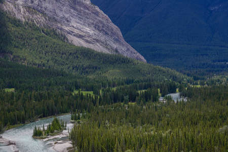 rockies: Bow valley near Banff in the canadian rockies, Canada