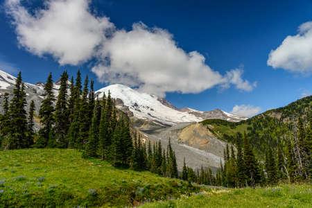 Meadow, glacier, forest and Mount Rainier, Washington state Stock Photo
